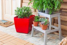 Best leroy merlin images gardens garden and