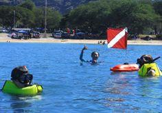hawaii snorkeling tour. #hawaii #hawaiitour #oahu #tour #snorkelingtour #snorkeling #westoahu #ocean
