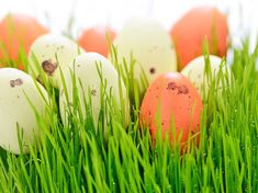 Une chasse aux oeufs de Pâques au château de Vaux le Vicomte ce weekend ? Venez découvrir cette fête annuelle et invitez vos amis. Activités A2. Vaux Le Vicomte, Scribe, Fle, Amigos