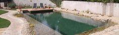 Gartengestaltung Peter Reinisch   Schwimmteich, Gartenneuanlage Outdoor Decor, Water Pond, Swimming