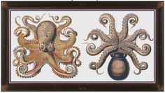 Octopus and Squid Cross Stitch Pattern by StringPlayground on Etsy