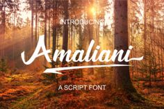 The Amaliani is a handwritten script font. It was designed using a brush pen, and will add a striking touch to your designs.
