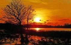 Om en kvinde fota af........ Threin Ottesen Der har øje for nuet og mærker Naturen skønne øjeblikke