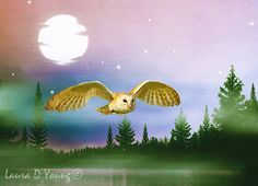 Bird Art Print Barn Owl Flying Full Moon and by FineArtography