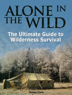 Preppers blueprint 15 lessons on how to save yourself from alone in the wild the ultimate guide to wilderness survival preppers survival survival malvernweather Gallery