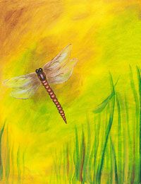 Dragonfly canvas painting party design. #socialartworking