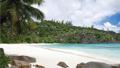 Four Seasons Resort Seychelles is situated less than 5 metres from the beach located on Petite Anse, Baie Lazare. Seychelles Hotels, Seychelles Islands, Honeymoon Spots, Honeymoon Destinations, Portal, Secluded Beach, Cool Pools, Awesome Pools, Four Seasons Hotel