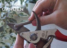 Rusty Garden, Big Garden, Mason Jar Planter, Wood Repair, Yard Tools, Sharpening Tools, Garden Equipment, Diy Shops, Garden Projects