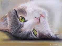 Katzenaugen | KunstiX