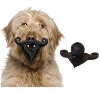 Moody Pet Humunga Stache & Beard Dog Toy