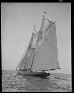 Columbia of Gloucester (by Boston Public Library) Yacht Week, Fishing Vessel, Ship Drawing, Make A Boat, Classic Yachts, Yacht Interior, Yacht Boat, Yacht Design, Sailing Ships