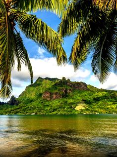 28 Amazing Photos of Bora Bora - Which City to Travel Bora Bora, Tahiti, Beach Trip, Vacation Trips, Dream Vacations, Vacation Spots, Marie Galante, Places To Travel, Places To See