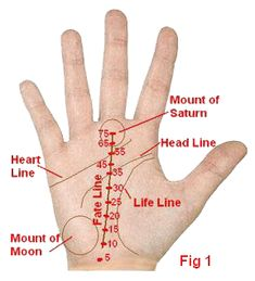 Fate line in Indian Vedic Palmistry - Ups and Downs in Career, job, business and earnings Astrology Hindi, Zodiac Horoscope, Chinese Face Reading, Indian Palmistry, Palm Lines, Reading For Beginners, Witch Board, Talk To The Hand, My Well Being