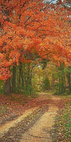 I wonder where this road will take me.