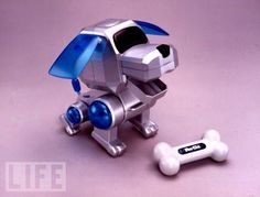 Poo-Chi!! I always wanted one. Desperately. I only had a mini one that wasn't actually 'living.' haha.