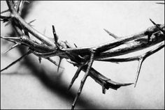 I love Thee for wearing the thorns on Thy brow; If ever I loved Thee, my Jesus, 'tis now. Birth Of Jesus Christ, My Jesus, King Jesus, Jesus Lives, Good Friday Images, Crown Of Thorns, He Is Risen, Morning Inspiration, Daily Inspiration