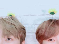 Guess who.lol It's Jaemin and Renjun~