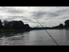 Salmon Fishing River Tay