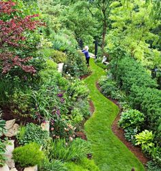How to landscape on a slope. An Illinois master gardener shares her tips for taming a difficult landscape.