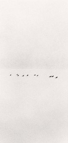Michael Kenna Ten Birds in Snowstorm, Wakoto, Hokkaido, Japan, 2002