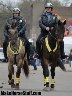 St.Paul Mounted Police horses Javier (Appaloosa) and Rascal out on patrol. Wearing reflective breastplates, boots, lead ropes and halter bridles.