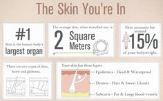 Your skin is the largest organ, are you taking care of it properly?