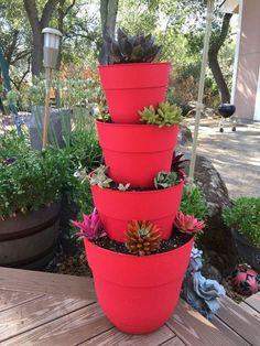 diy succulent tiered planter gardening how to, crafts, diy, flowers, gardening, succulents