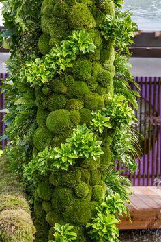 Must see. RHS Chelsea Flower Show 2015 Photo Gallery / RHS Gardening ... around the dead tree