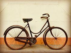 【39件】trike Bike 3 Wheel Bicycle For Dogs 犬 用 三輪自転車 犬乗せ|おすすめの画像