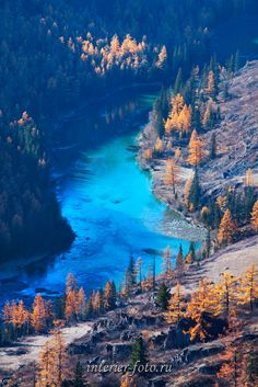 Altai Алтай