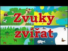 Zvuky zvířat pro děti - Zvířátka z farmy, Zvířátka z lesa, Zvířátka v ZOO, Mořská zvířátka - YouTube