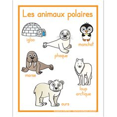 Fichier PDF téléchargeable En couleurs seulement Format: 8.5 X 11'' 1 page Animal Activities, Montessori Activities, Winter Activities, Arctic Animals, Zoo Animals, Majestic Animals, Teaching French Immersion, Rare Albino Animals, French Flashcards