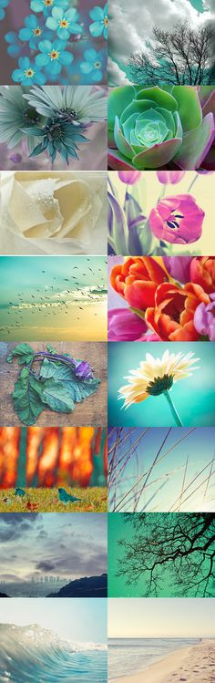 Simply Beauty by Michela on Etsy--Pinned with TreasuryPin.com