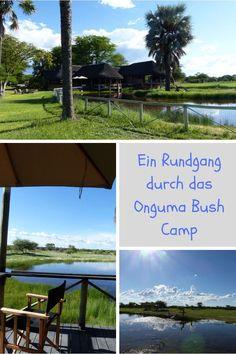 Namibia in 14 Tagen: Während unserer Rundreise durch den Südwesten Afrikas erleben wir Natur pur. Das Onguma Bush Camp ist der ideale Ausgangspunkt für Familien mit Kindern, um eine Safari im Etosha Nationalpark zu unternehmen.