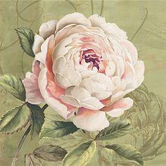 french brocante  ✿⊱╮X ღɱɧღ || Vintage Rose Brocante
