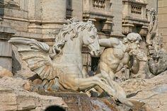 Italia, Roma, Radicchio Fuente