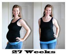 Addi pregnant chubby