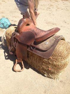 "Trail saddle 16""seat 7"" gullet"