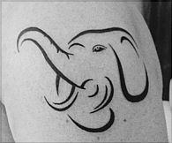 I love elephants!