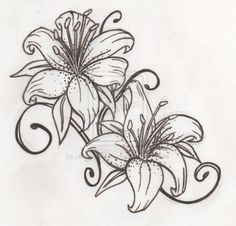 ... Lilies Lily Tattoo Design Tiger Lily Tattoo Tattoos Tattoo Designs