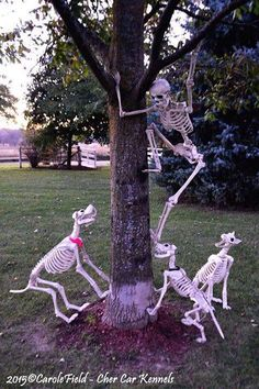 i like this and have the perfect tree skeleton props halloween outdoor decor - Halloween Outdoor Ideas