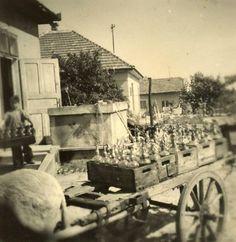 Szikvízgyár Dunakeszin, 1950-es évek