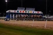 DELTA DOWNS SELECTIONS