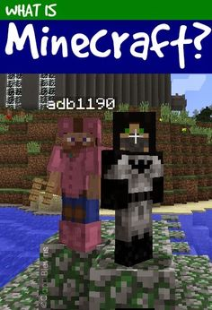Minecraft® is a game for those who love to create, survive, and build outside the box. Mojang® released Minecraft in 2011 on November 18th, at the MineCon® keynote. Since then over 17,510,500 people have bought the PC/Mac version. My favorite thing about Minecraft is that you can play by yourself, or with your friends …