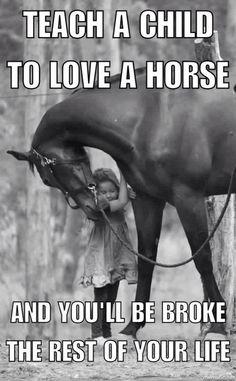 Horses and kids Funny Horse Memes, Funny Horses, Cute Horses, Horse Love, Beautiful Horses, Funny Animals, Horse Humor, Funny Quotes, Beautiful Cats