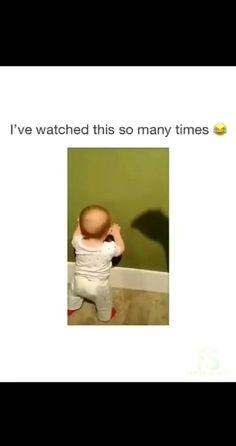 Cute Funny Baby Videos, Cute Funny Babies, Super Funny Videos, Funny Videos For Kids, Funny Short Videos, Funny Video Memes, Funny Animal Videos, Funny Vidos, Very Funny Jokes