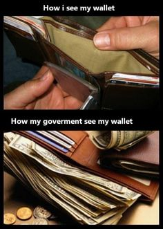 Our government
