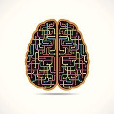 How the Brain Purges Bad Memories A brain circuit has been found that allows us to forget fear and anxiety
