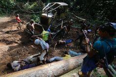 Ka'apor Indians use sticks to beat loggers.