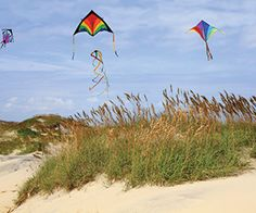 Plan a group travel to the Outer Banks